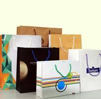 In catalogue, túi giấy , hộp giấy , decal , folder, tờ gấp, tờ rơi , lịch , ...