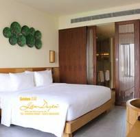 6 Chăn ga gối đệm khách sạn và gia đình Goldensilk