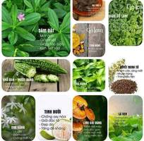 13 Trà giảm cân thảo golean detox