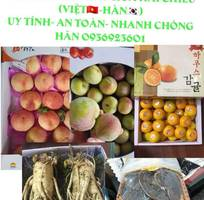 Vận chuyển hàng hóa 2 chiều  Việt-Hàn