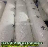 1 Nhà nhập khẩu và phân phối độc quyền màng nhà kính Israel tại Việt Nam,màng nhà kính bình minh