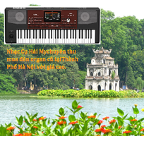 Thu mua đàn organ cũ tại Hà Nội