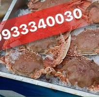 6 HOT        Thịt Càng Ghẹ, Thịt càng Cúm, Thớ Ghẹ, Thịt Cua, Các loại bóc sẵn Nấu Súp Cua, Bánh Canh.