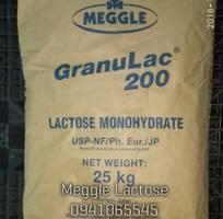 Lactose Meggle-Đức