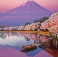 1 Tour Nhật bản 4d3n  máy bay  21.900.000