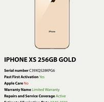 Ip Xs 256g gold qt