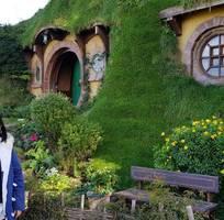 9 Trại hè New Zealand 2020 trong 3 tuần giá chỉ 60 triệu