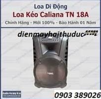 Loa Lớn Bluetooth Caliana TN-18A hàng Việt Nam cao cấp