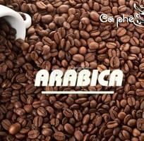 Cà phê arabia - nguyên chất - không pha tạp chất