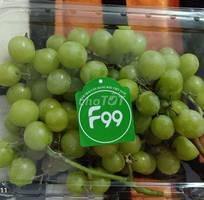 Hoa quả trái cây nhập khẩu hàng đầu việt nam - f99