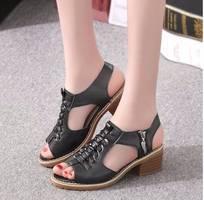 1 Sd02d - giày cao gót nữ phong cách hàn quốc