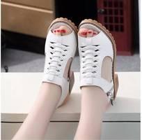 2 Sd02d - giày cao gót nữ phong cách hàn quốc