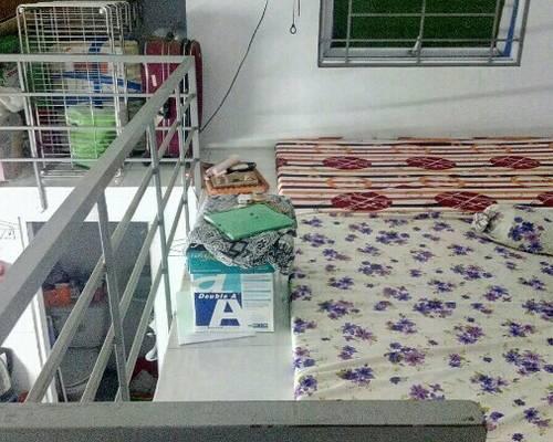 Cần tìm 2 nữ ở ghép- đường Huỳnh Tấn Phát- quận 7