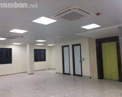 Cho thuê toà nhà mới xây làm văn phòng khu Trần Quang Diệu- Hoàng Cầu