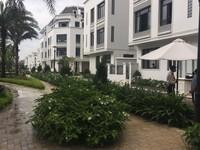 Cho thuê liền kề 6A làng Việt kiều châu âu , 78 m2 X 4 tầng đủ nội thất giá...