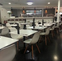 Ghế Eames nhập khẩu cho phòng ăn, cafe, nhà hàng