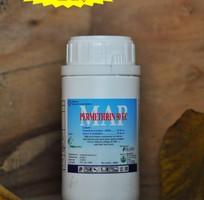 2 Thuốc diệt côn trùng, diệt muỗi, diệt gián, diệt kiến, diệt ruồi, diệt bọ chét... Fendona 10SC  12K