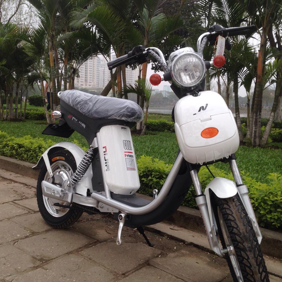 1 Bán thanh ly 10 xe đạp điện Nijia