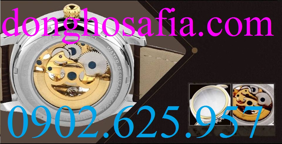 10 Đồng hồ nam cơ Aiers B125G AE001