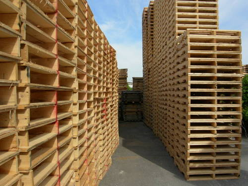 1 Pallet gỗ, ballet cây giá rẻ kê hàng chỉ từ 150.000 tại TP. HCM
