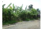Sang 1.800m2 đất vườn Lái Thiêu BD, 300m2 TC đường ôtô ...