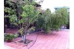 Bán đất và nhà vườn tại Củ Chi. HCM. Chính chủ.