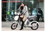 Xe đạp điện nhập khẩu chính hãng Nijia 2015, Giantm133 Hỗ Trợ...