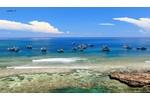 Chương trình du lịch Nha Trang - Đà Lạt 5 ngày giá...