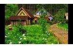 Tour Đà Lạt - Buôn Ma Thuột 4 ngày 4 đêm haidangtravel...