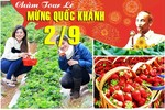 Tour du lịch Đà Lạt 3 ngày 3 đêm lễ Quốc Khánh...