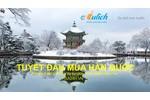 Xin visa Hàn Quốc- Cùng Visa 24h trải nghiệm Tuyết Đầu Mùa...