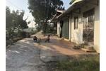 Bán 850m2 đất tại Đại Áng, Thanh Trì, có thể chia thành nhiều lô đất nhỏ