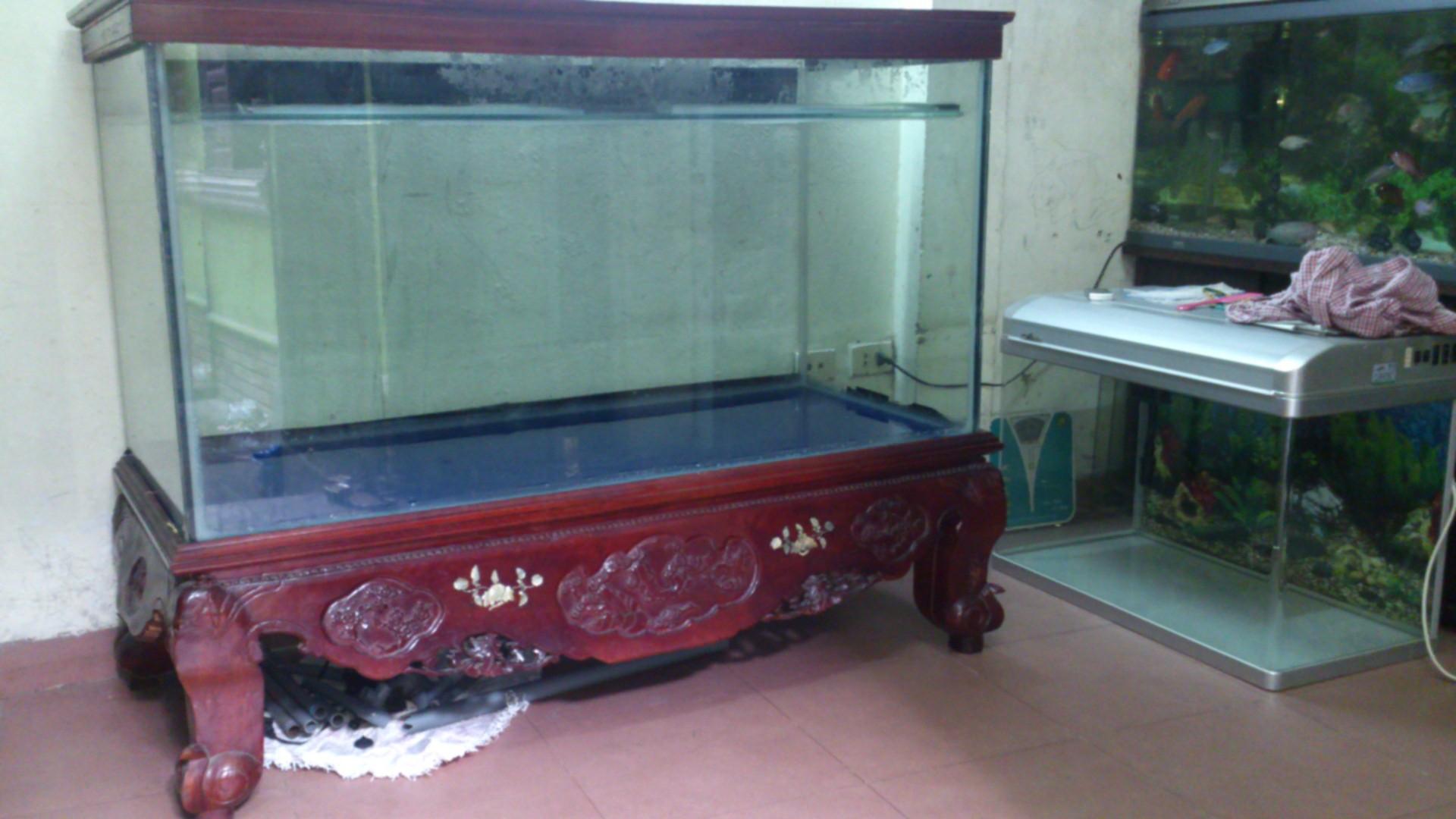 thanh lý bể cá chân quỳ hải phòng - docuhaiphong.vn - Đồ cũ hoàng quỳnh